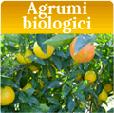 agrumi-biologici_tasto