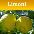 limonitasto
